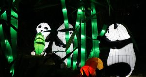 dubai-garden-glow-travel