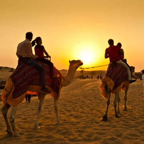 morning-desert-safari-