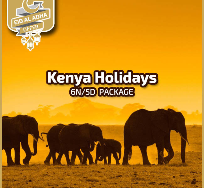 Kenya Tour Packages from Dubai