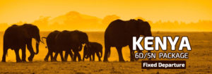 Kenya Tour Packages from Dubai UAE