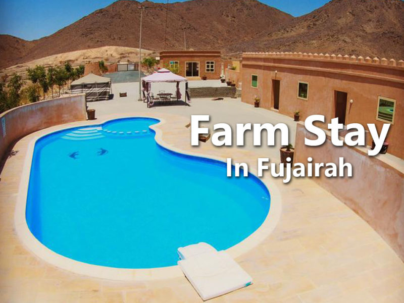 Farm Stay In Fujairah