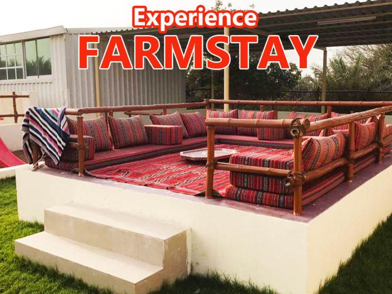 Farmstay In UAE