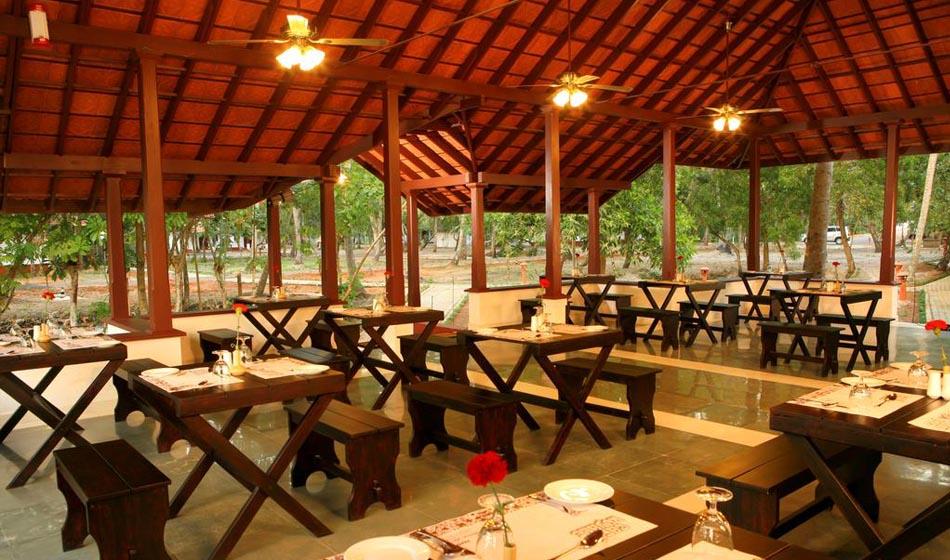 Kerala Ayurveda Rejuvenation Packages 3