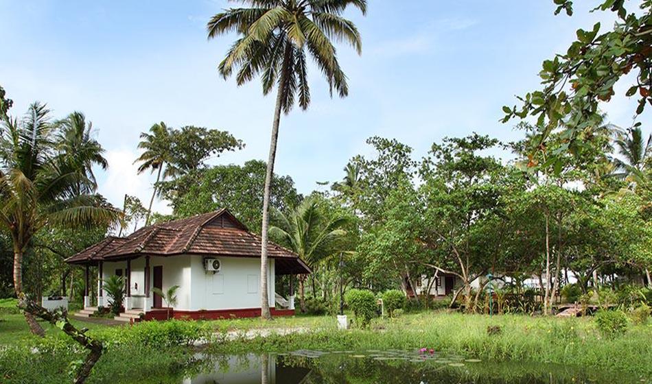 Kerala Ayurveda Rejuvenation Packages 33