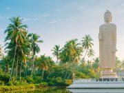 Sri Lanka Tour Packages from Dubai